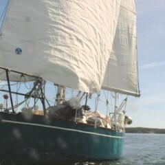 Sailing Trips (2-3 days)
