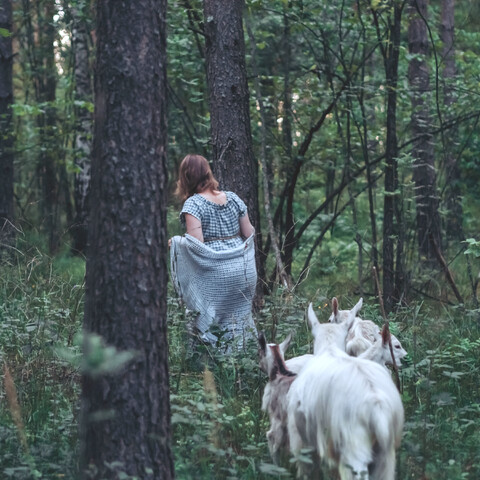 Walking with the goats