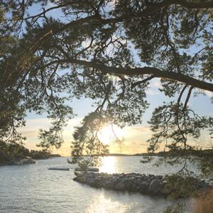 Mindful Nature Walk and Sauna Ferry, Helsinki