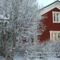 Christmas in Countryside