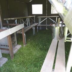 Tent sauna activities