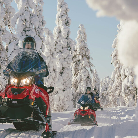 Snowmobile Safari to the Arctic Circle Forest