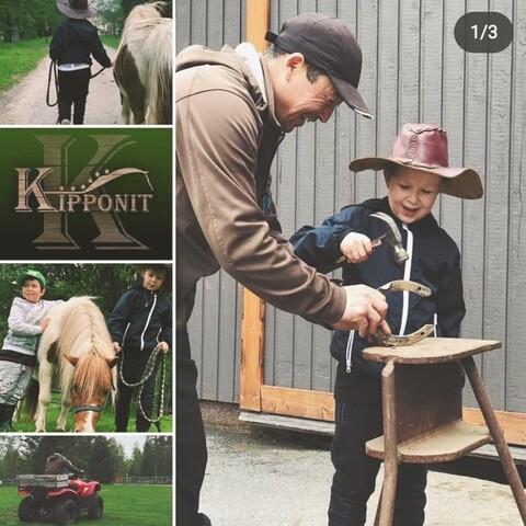 Boys' day at the horse farm