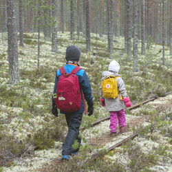 Children's Rokua day trip