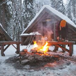 Meet Lapland's nature - Forest walk and campfire