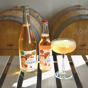 Cider or beer tastings by Bornemanns, 图尔库