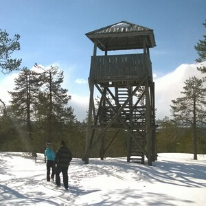 High Tower in the forest, Rovaniemi