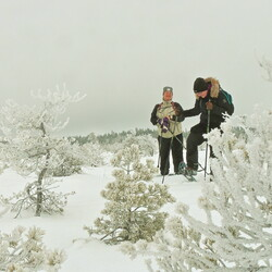 Snowshoeing in Torronsuo National Park