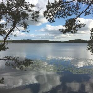 Patikointia Kurjenrahkan kansallispuistossa, Turku