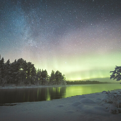 Northern Lights Trip In Nature